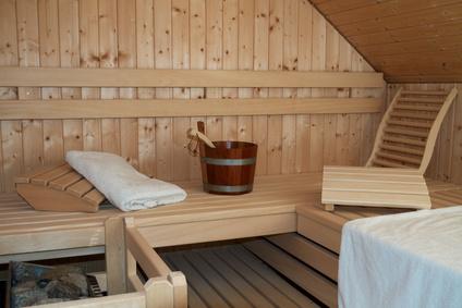 Sauna XVII